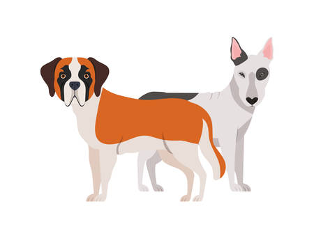 cute and adorable dogs on white background vector illustration design Ilustracja