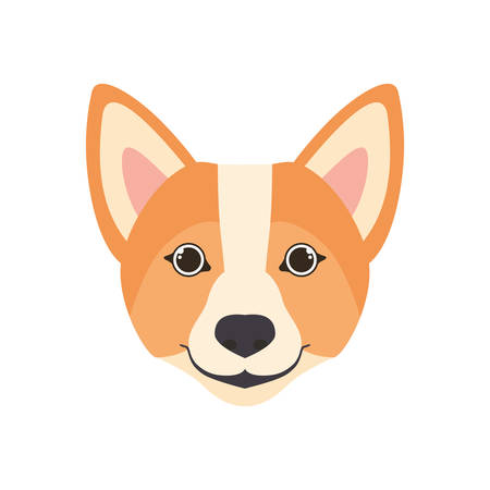 head of cute welsh corgi dog on white background vector illustration design