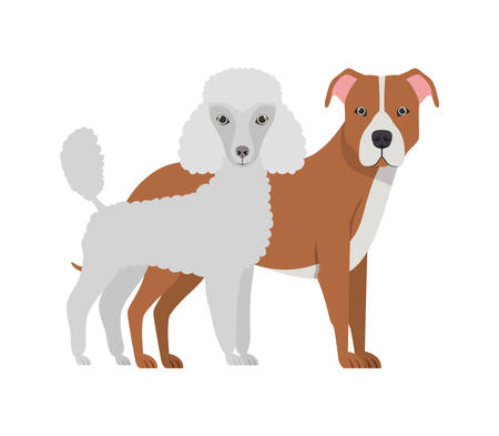 cute and adorable dogs on white background vector illustration design Banque d'images - 130595579