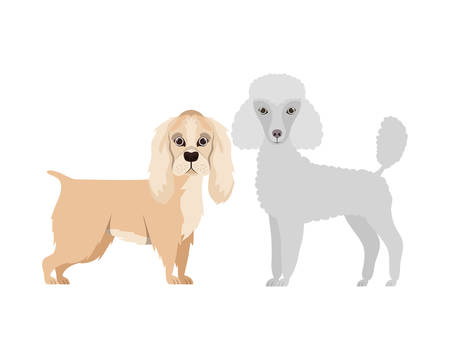 cute and adorable dogs on white background vector illustration design Banque d'images - 130595581