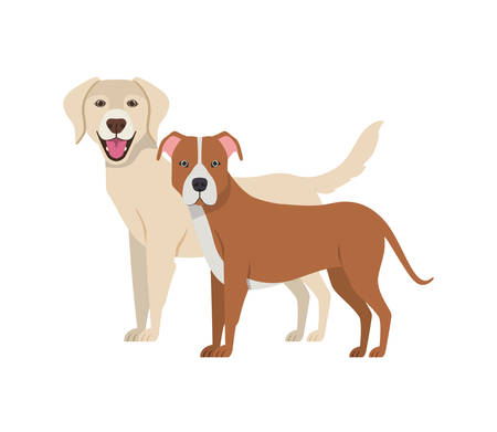 cute and adorable dogs on white background vector illustration design Banque d'images - 130595590