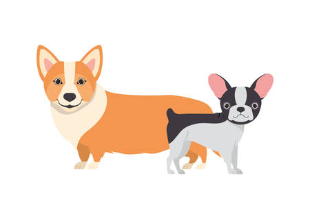 cute and adorable dogs on white background vector illustration design Banque d'images - 130595635