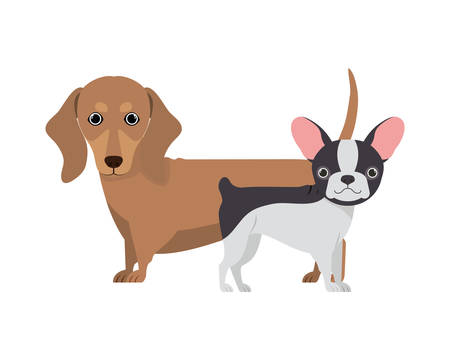 cute and adorable dogs on white background vector illustration design Banque d'images - 130595645