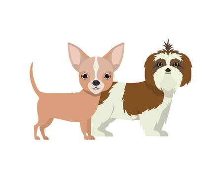 cute and adorable dogs on white background vector illustration design Banque d'images - 130595651