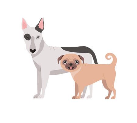 cute and adorable dogs on white background vector illustration design Banque d'images - 130595654