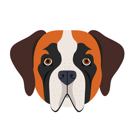 head of cute san bernardo dog on white background vector illustration design Stock Illustratie