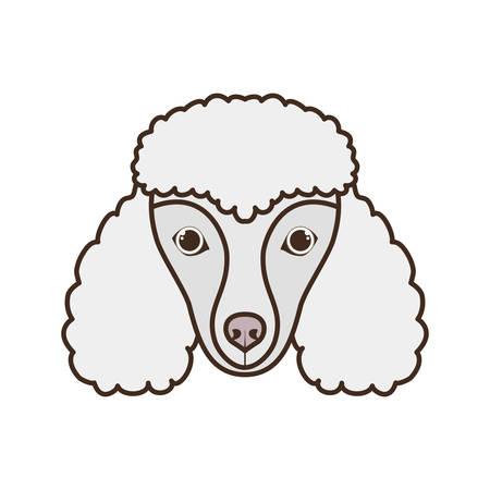 head of cute poodler dog on white background vector illustration design Stockfoto - 130686495