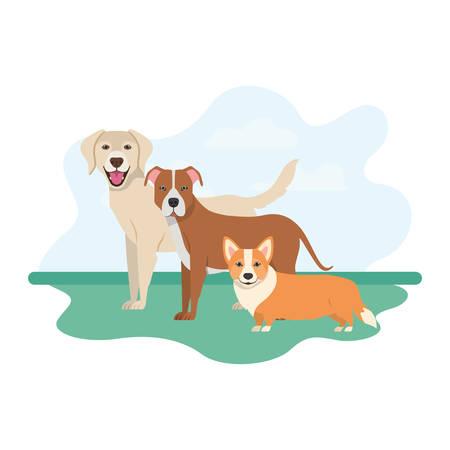 set of adorable dogs on white background vector illustration design Banque d'images - 130686588