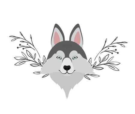 head of cute lobo siberiano dog on white background vector illustration design