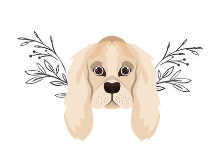 head of cute cocker spaniel ingles dog on white vector illustration design Banque d'images - 130686594