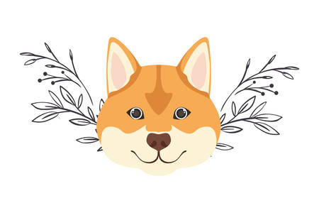 head of cute akita inu dog on white background vector illustration design
