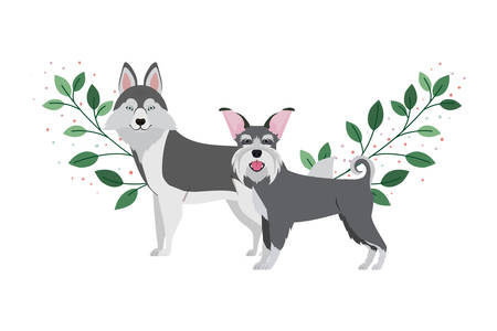 cute and adorable dogs on white background vector illustration design Banque d'images - 130686914