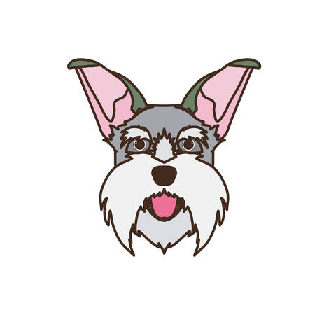 head of cute schnauzer dog on white background vector illustration design