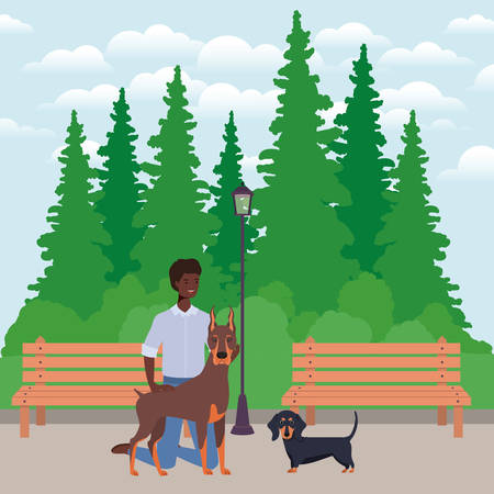 young afro man with cute dogs mascots in the park vector illustration design Illustration