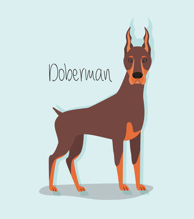 cute doberman dog pet character vector illustration design