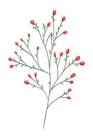 branch with seeds decorative icon vector illustration design Zdjęcie Seryjne - 132526714
