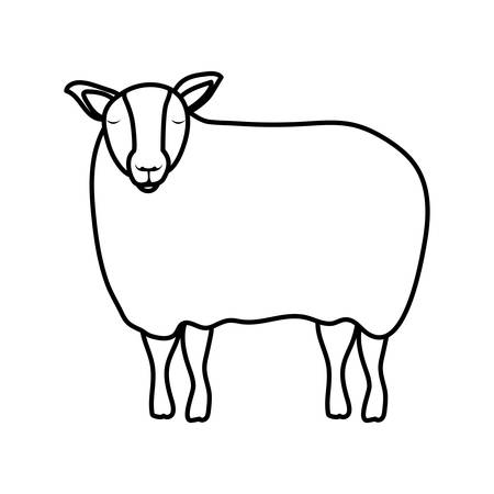 cute sheep manger animal character vector illustration design Иллюстрация