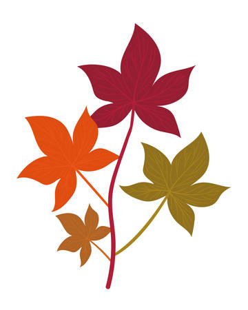 Autumn leaves design, season nature ornament garden decoration and botany theme Vector illustration 스톡 콘텐츠 - 134049956