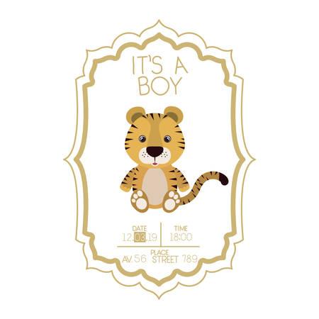 cute little tiger it s a boy card vector illustration design
