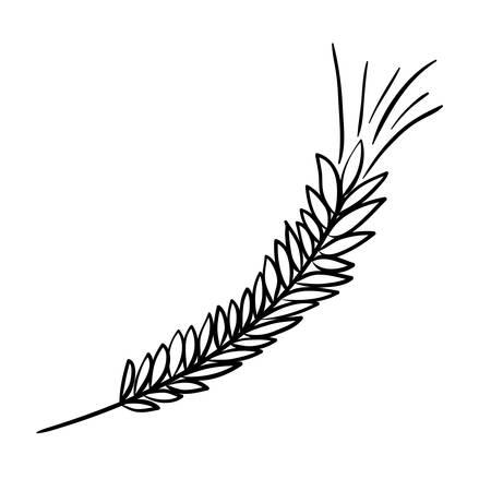 wheat spikes decoration isolated icon vector illustration design