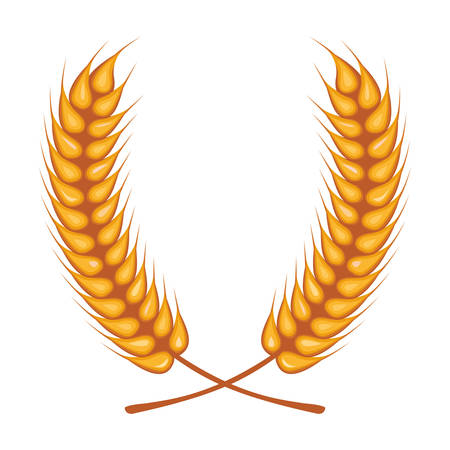 wheat spikes crown decoration isolated icon vector illustration design