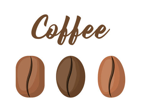 Coffee beans design, Drink breakfast beverage bakery restaurant and shop theme Vector illustration