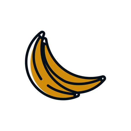 Banana design, Fruit healthy organic food sweet and nature theme Vector illustration