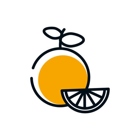 Orange design, Fruit healthy organic food sweet and nature theme Vector illustration Ilustrace