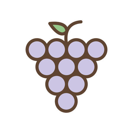 grapes line and fill style icon design, Fruit healthy organic food sweet and nature theme Vector illustration Ilustracja