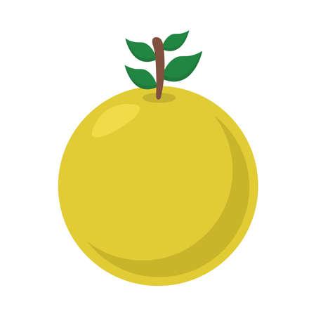 orange flat style icon design, Fruit healthy organic food sweet and nature theme Vector illustration