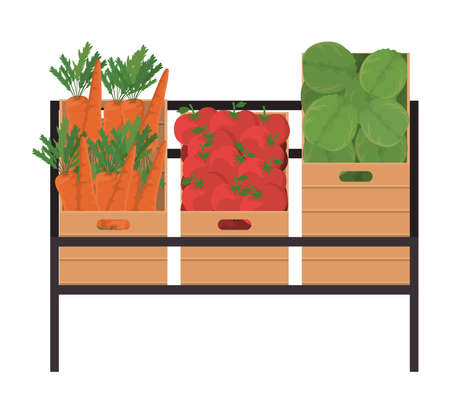 carrots tomatoes and lettuces inside boxes on shelf design, Vegetable organic food healthy fresh natural and market theme Vector illustration Ilustracja