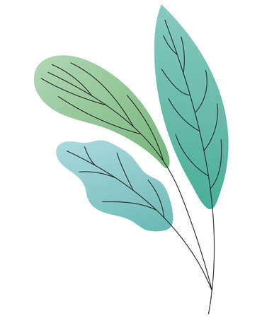 leaves of different type of green vector illustration design