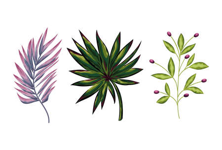 set of green leaves and one purple vector illustration design