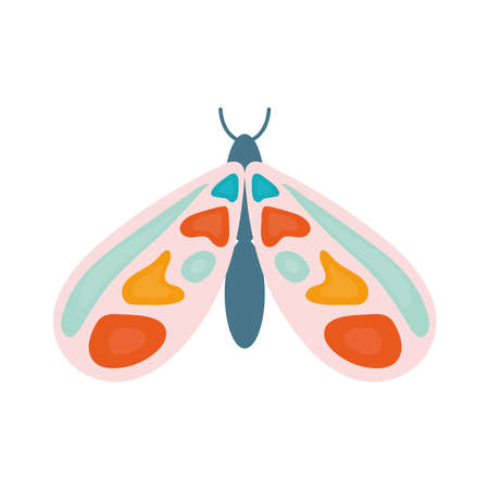 hand drawn butterfly with a different colors vector illustration design Ilustrace