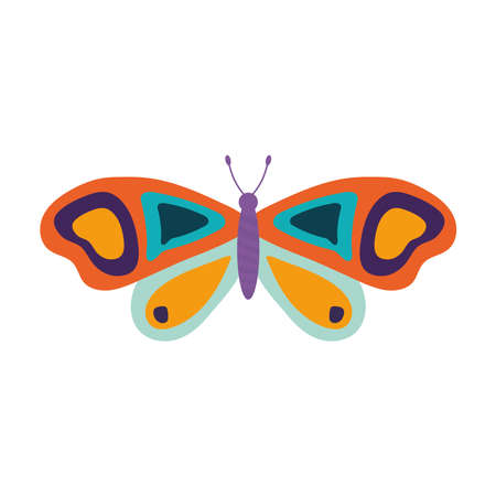 hand drawn butterfly with a white background vector illustration design
