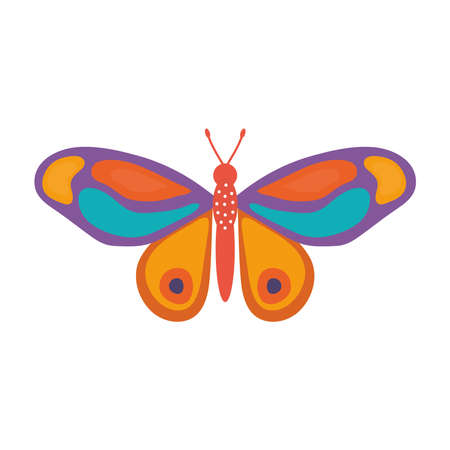 butterfly hand drawn over a white background vector illustration design