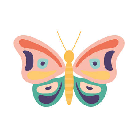 hand drawn butterfly on a white background vector illustration design