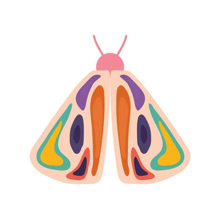 hand drawn butterfly over a white background vector illustration design