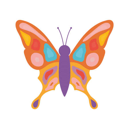 hand drawn butterfly with a different colors like purple and red vector illustration design Ilustrace