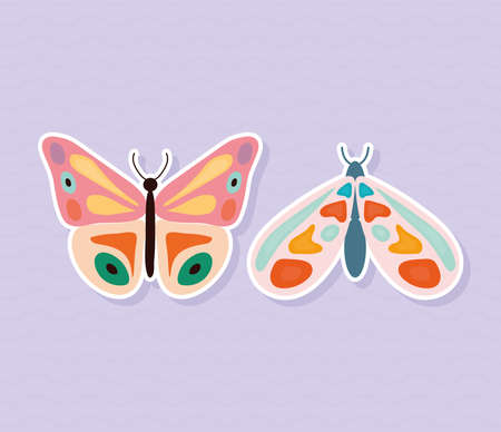 two butterflies hand drawn style on purple background vector illustration design Ilustrace