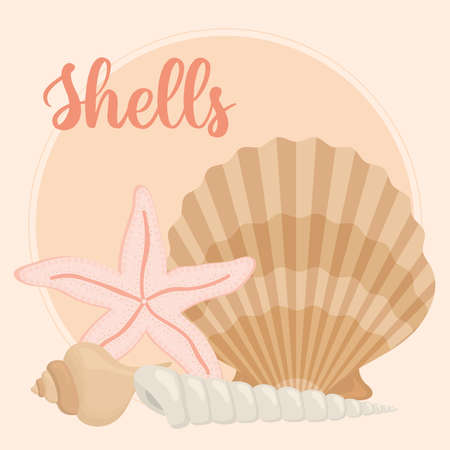 banner with set seashell icons