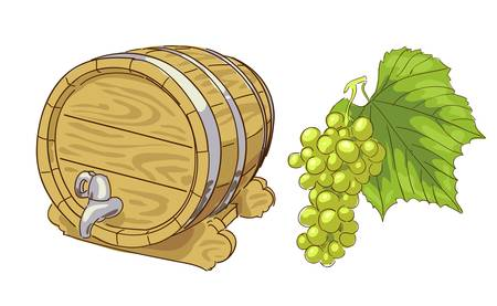 Old wooden barrel and grapes cluster. Vector illustration.
