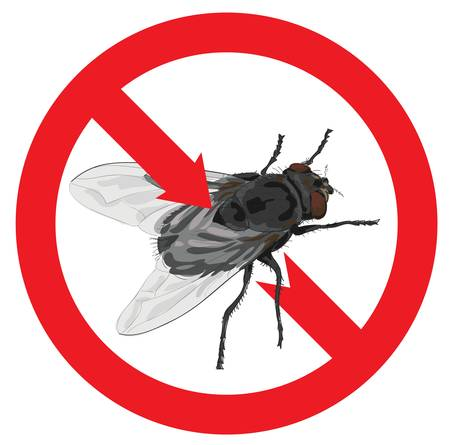 Flies banned. Sign prohibited. Vector illustration.