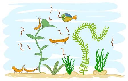 Aquarium with shrimps   Illustration