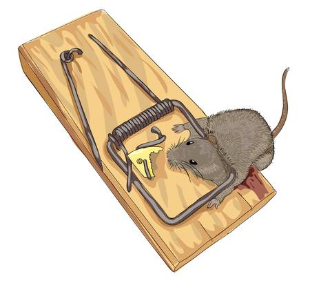 Mouse in a mousetrap.  Vector