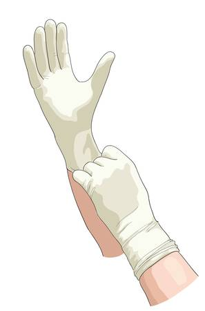protective gloves: Hands in sterile gloves   illustration  Illustration