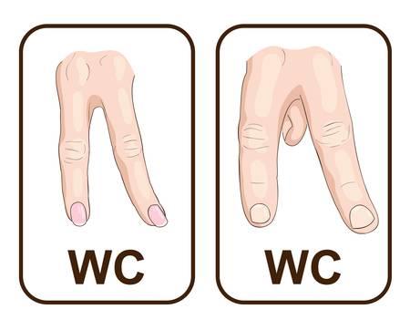 WC  Gender symbols   illustration Stock Vector - 16317201