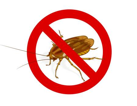 revolting: Stop Cockroach sign. Vector illustration. Illustration
