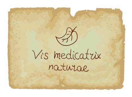 Vis medicatrix naturae is the Latin phrase  Each person
