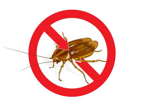 Stop Cockroach sign.  Vector